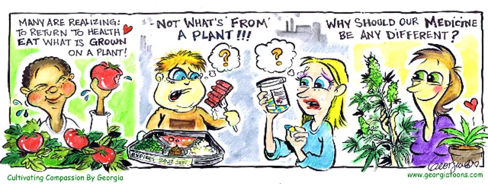plantnotplant