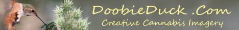 doobie-banner._JPG.
