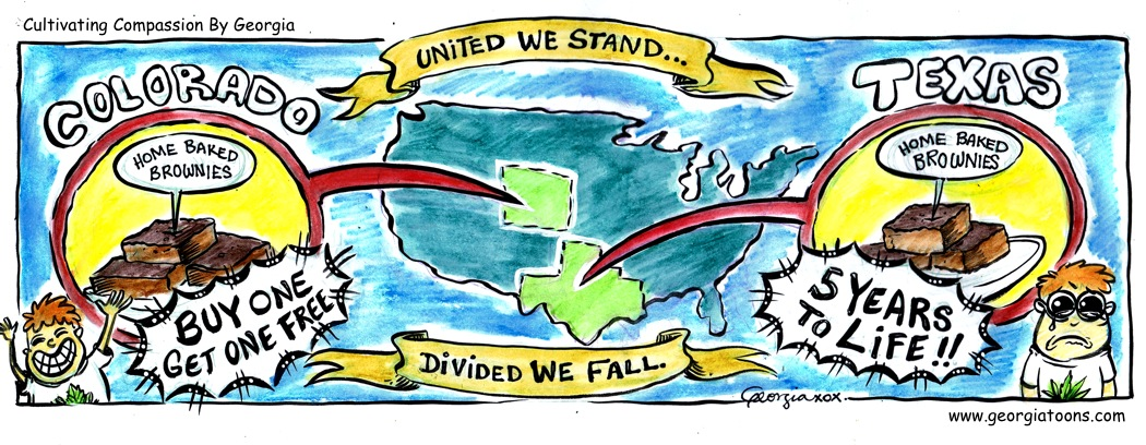 united:divided